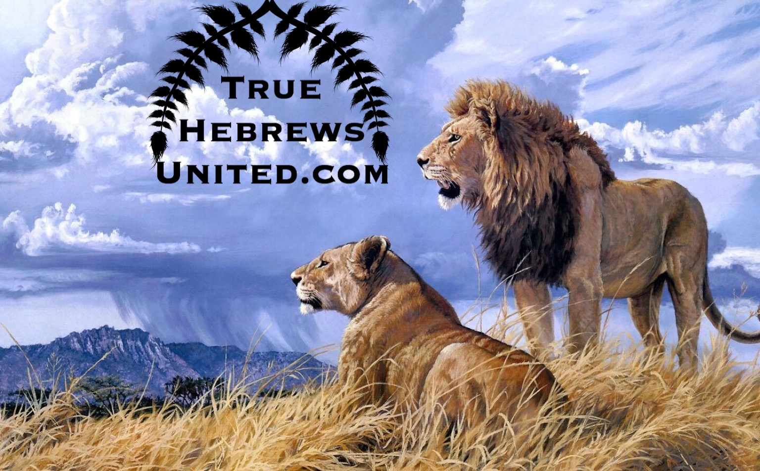 True Hebrews United logo